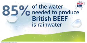 GBBW rainwater